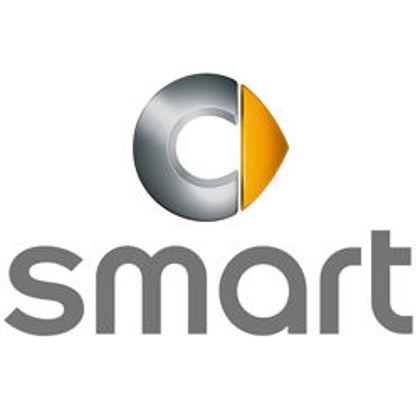 Εικόνα για τον κατασκευαστή SMART